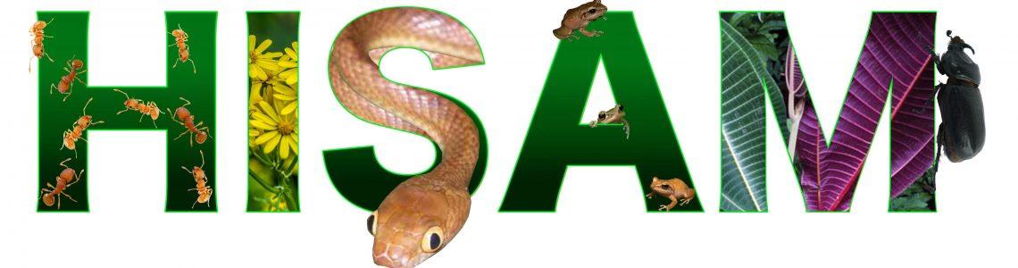 February is Invasive Species Awareness Month