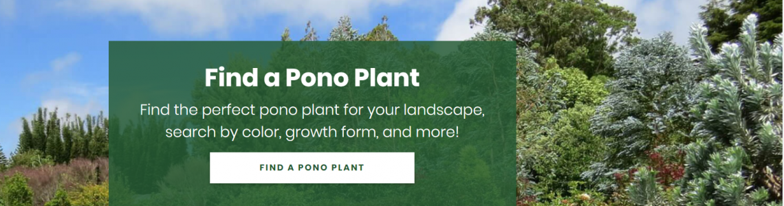 New look to the Plant Pono website